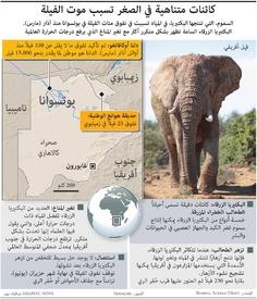 أفريقيا: كائنات متناهية في الصغر تسبب موت الفيلة infographic