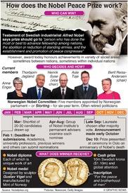 NOBEL PRIZE: Award process  infographic