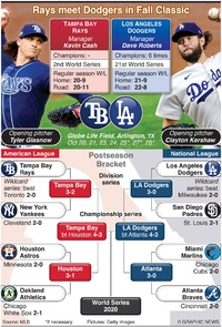 BASEBALL: World Series 2020 infographic
