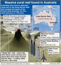 ENVIRONMENT: Massive coral reef discovered in Australia infographic