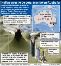 AMBIENTE: Descubren arrecife de coral masivo en Australia infographic