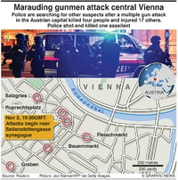 TERROR: Vienna shooting (1) infographic