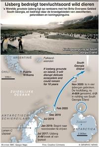 MILIEU: Enorme ijsberg bedreigt toevluchtsoord wild dieren infographic