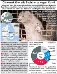 GESUNDHEIT: Dänemark tötet Millionen Nerze aus Angst vor Covid infographic
