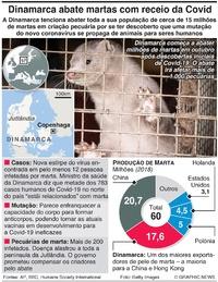 SAÚDE: Dinamarca abate martas com receio da Covid infographic