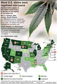 U.S. ELECTION: More states back legalised marijuana infographic