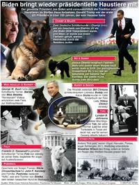 UNTERHALTUNG: Pets der US Präsidenten infographic