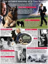 ENTRETENIMIENTO: Mascotas presidenciales de EUA infographic
