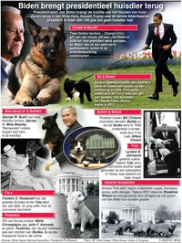 ENTERTAINMENT: Presidentiële huisdieren infographic