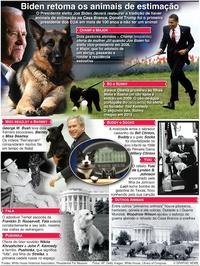 ENTRETENIMENTO: Animais de estimação na Casa Branca infographic