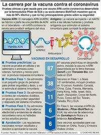 SALUD: Carrera por la vacuna de coronvirus infographic