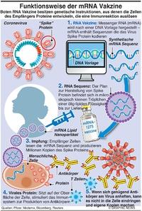 GESUNDHEIT: Wie mRNA Vakzine wirkt infographic