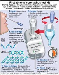 HEALTH: At-home coronavirus test infographic