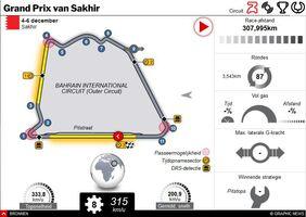 F1: Sakhir GP 2020 interactive infographic