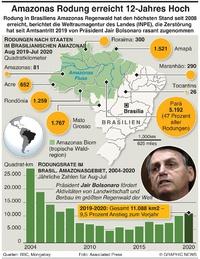 UMWELT: Amazonas  Rodungen auf 12-Jahres Hoch infographic