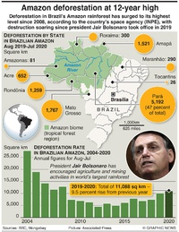 ENVIRONMENT: Amazon deforestation at 12-year high infographic