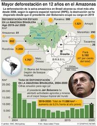 AMBIENTE: Peor deforestación en el Amazonas en 12 años infographic
