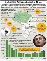 MILIEU: Ontbossing Amazone hoogst in 12 jaar infographic
