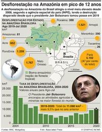 AMBIENTE: Desflorestação na Amazónia em máximo de 12 anos infographic