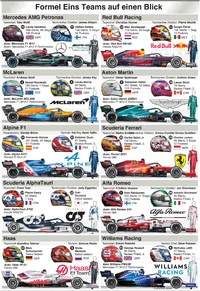 F1: Team Guide 2021 infographic