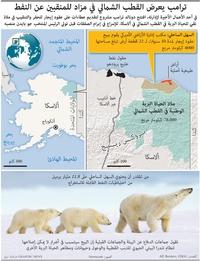 بيئة: ترامب يعرض القطب الشمالي في مزاد للمنقبين عن النفط infographic