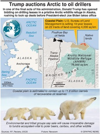 ENVIRONMENT: Trump auctions Arctic to oil drillers infographic
