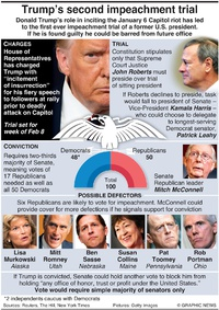 POLITICS: Trump's second Impeachment trial (1) infographic
