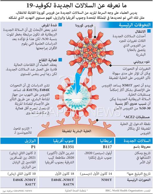السلالات الجديدة لكوفيد19- infographic