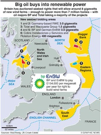 BUSINESS: UK wind farm auction infographic