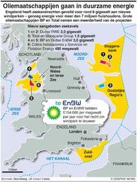 BUSINESS: Engelse veiling windparken infographic