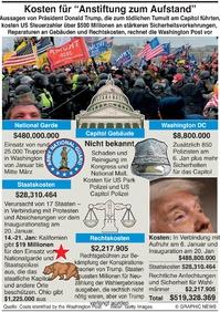 POLITIK: Kosten für Anstiftung zum Aufstand infographic
