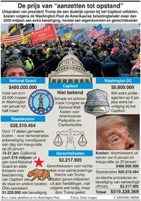 """POLITIEK: De prijs van """"aanzetten tot opstand"""" infographic"""