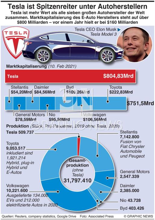 Tesla's Vormachtstellung infographic