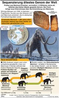 WISSENSCHAFT: DNA zur Entwicklung von Mammuts infographic