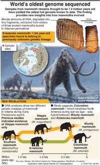 SCIENCE: World's oldest genome sequenced infographic
