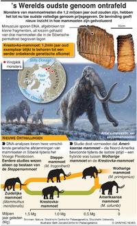 WETENSCHAP: DNA- record  infographic