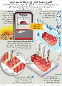 FOR TRANSLATION BUSINESS: 3D-printed steaks infographic