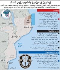صراع: إرهابيون في موزمبيق يقطعون رؤوس أطفال  infographic