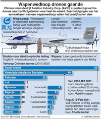 MILITARY: Chinese Wing Loong drone infographic
