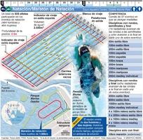 TOKIO 2020: Natación/Maratón de Natación Olímpicos infographic