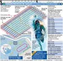 TÓQUIO 2020: Natação Olímpica/Maratona de natação infographic