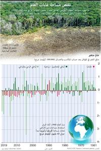 بيئة: تقلص مساحة غابات العالم infographic