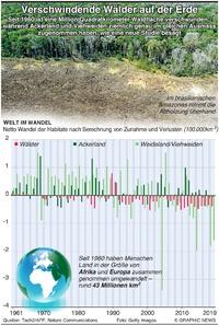 UMWELT: Wälder verschwinden von der Erde infographic