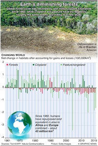 ENVIRONMENT: Earth's diminishing forests infographic