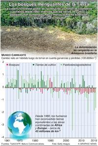 AMBIENTE: Los bosques menguantes de la Tierra infographic