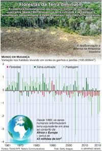 AMBIENTE: Florestas da Terra diminuem infographic