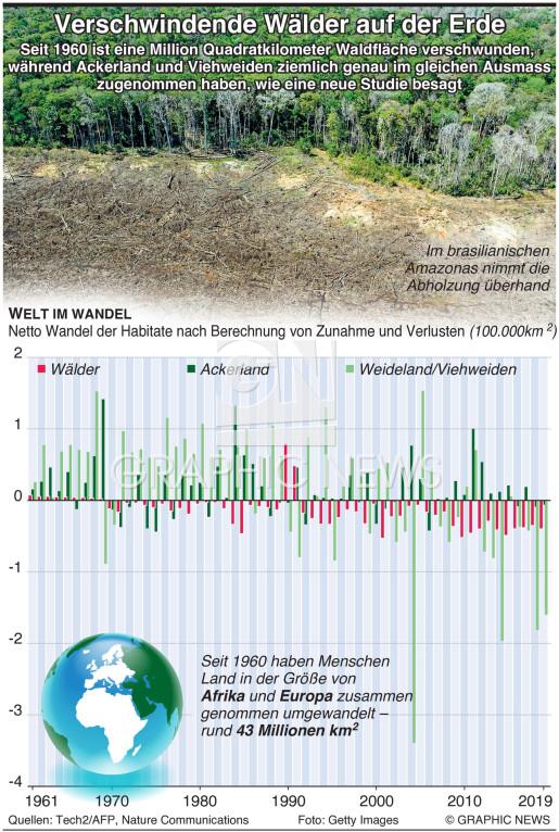 Wälder verschwinden von der Erde infographic