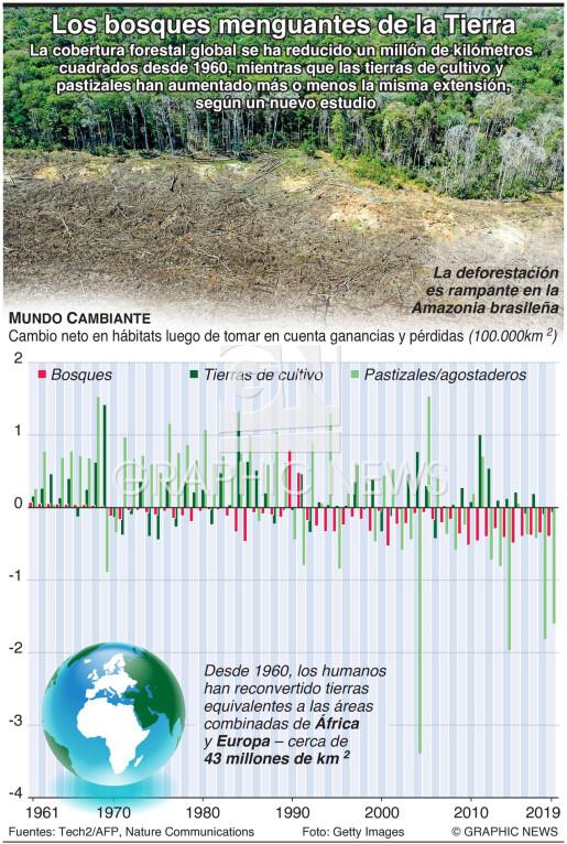 Los bosques menguantes de la Tierra infographic