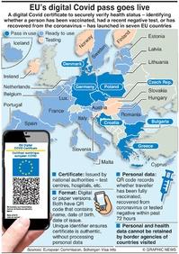 HEALTH: EU digital Covid pass infographic