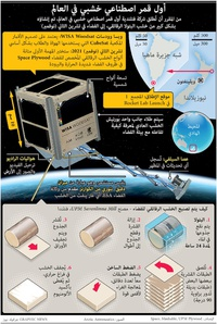 SPACE: World's first wooden satellite infographic